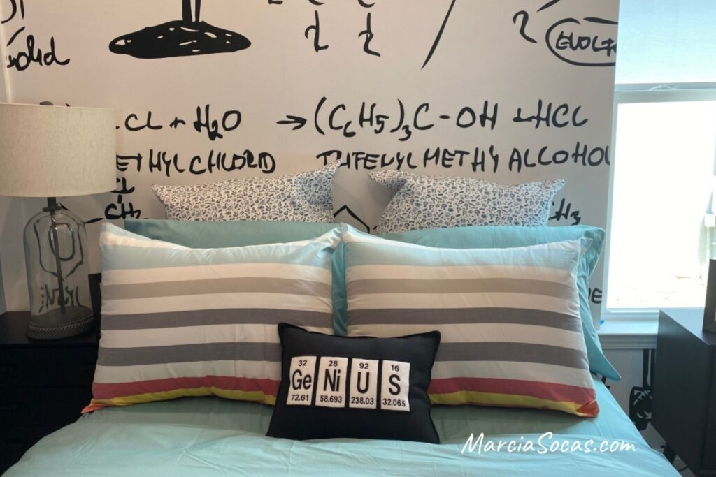 science themed bedroom pillow